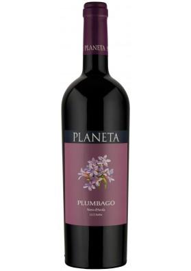 Plumbago - sicilia - maxervice - vino - siciliano