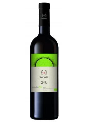 Aquilae Grillo