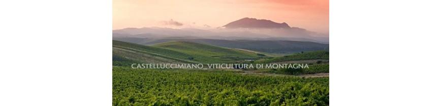 Castellucci Miano